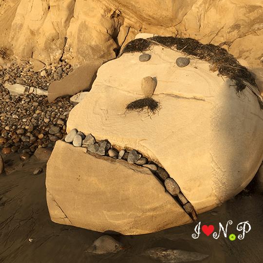 Creative San Diego Beach Art